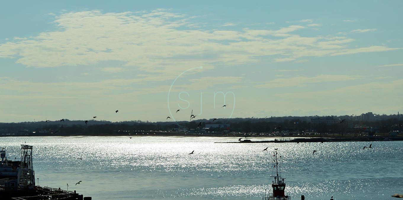 Jersey Birds