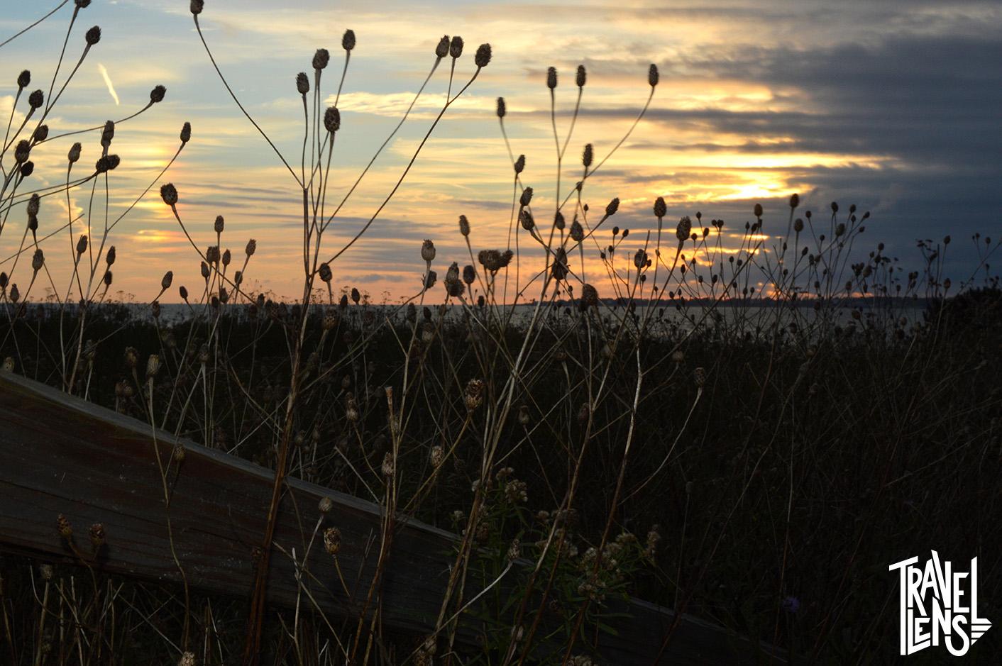 Sachuest Point Sunset