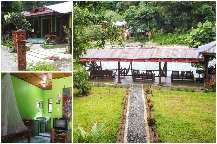 Hotels in Bukit Lawang