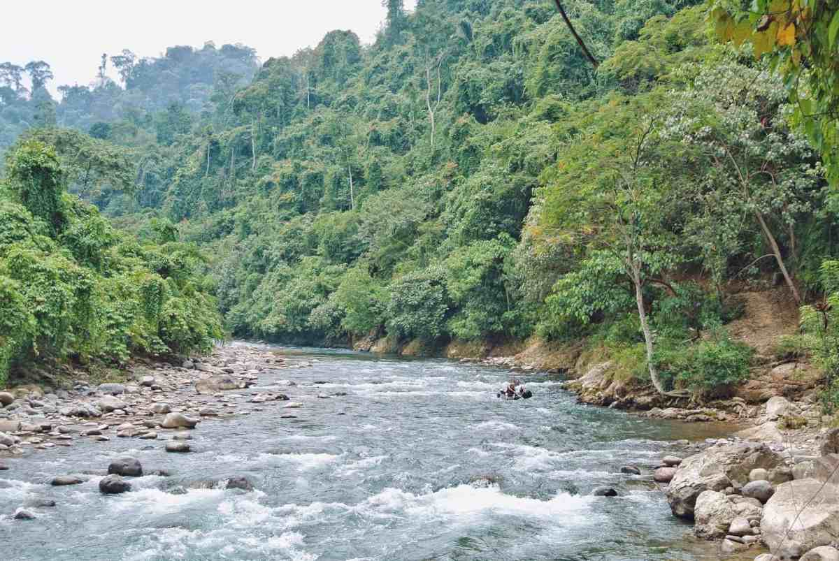 Tips voor een te gekke jungle trekking in Bukit Lawang Sumatra