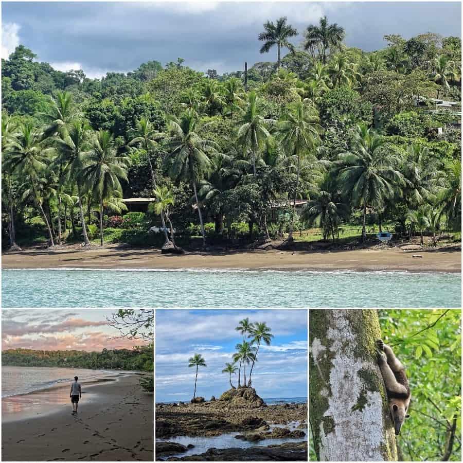 3 weken Costa Rica