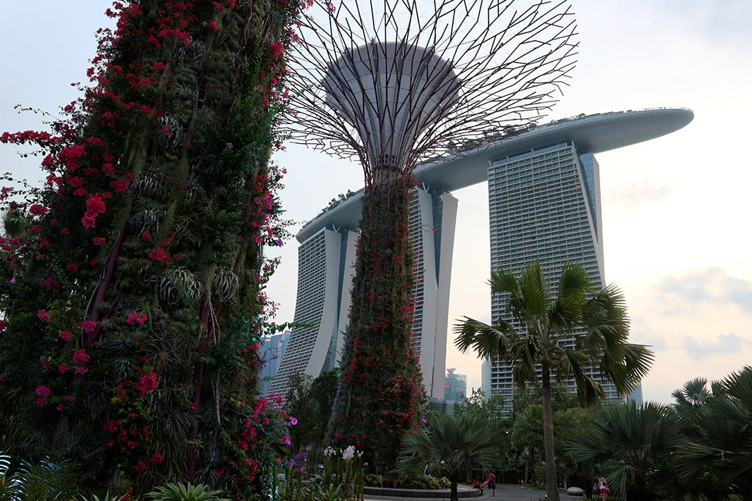 esterno del marina bay sands, visto dal garden by the bay, singapore