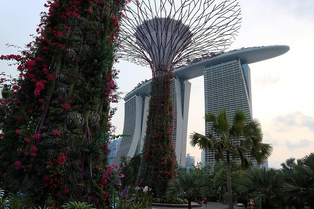 esterno del marina bay sands, visto dal garden by the bay, singapore
