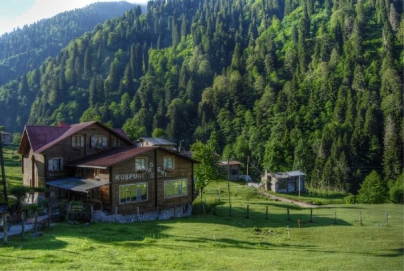 Hotel-ayder-plateau
