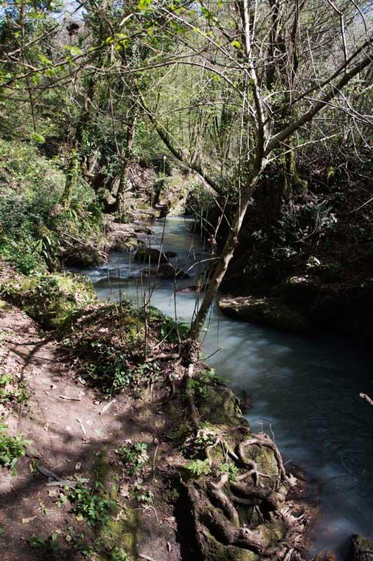 Trekking lungo il fiume Treja