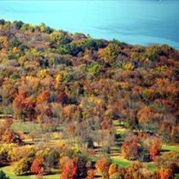 NY Fall Foliage_-1765206736717856432