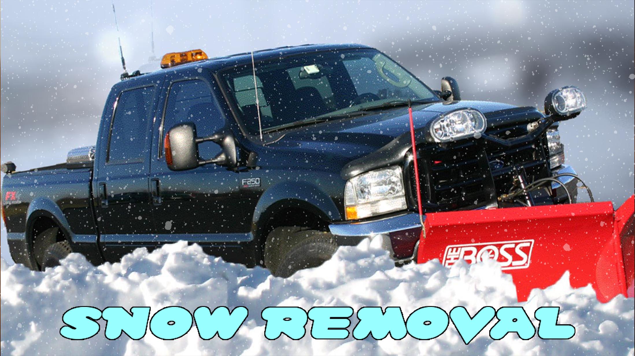 Snow Removal 1 20 2016_1453333277603.jpg