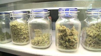 Medical-marijuana-jpg_20160419222453-159532