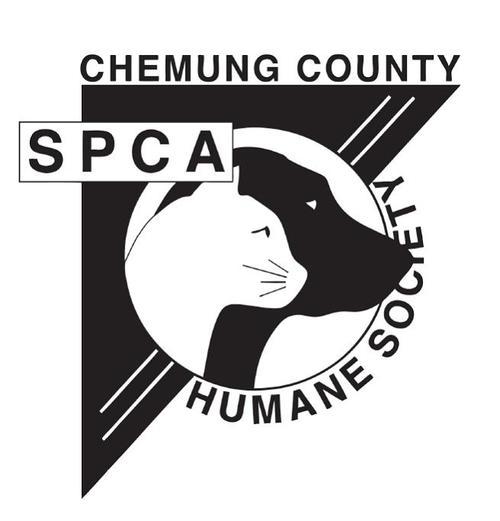 CHEUMUNG SPCA_1469054563268.jpg