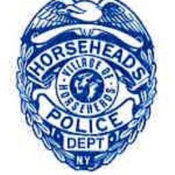 horseheads police department_1548652311539.JPG.jpg