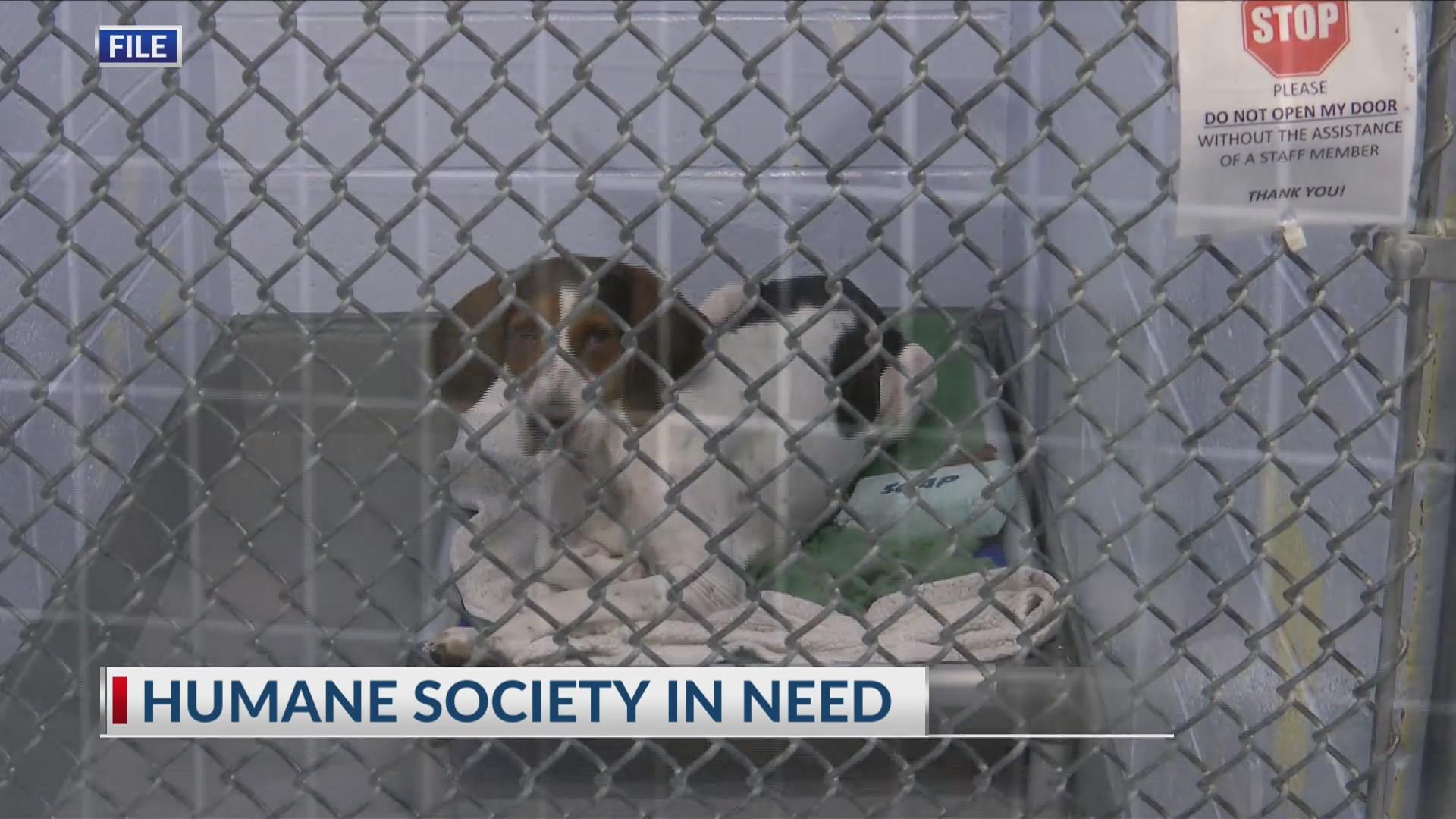 Human Society needs