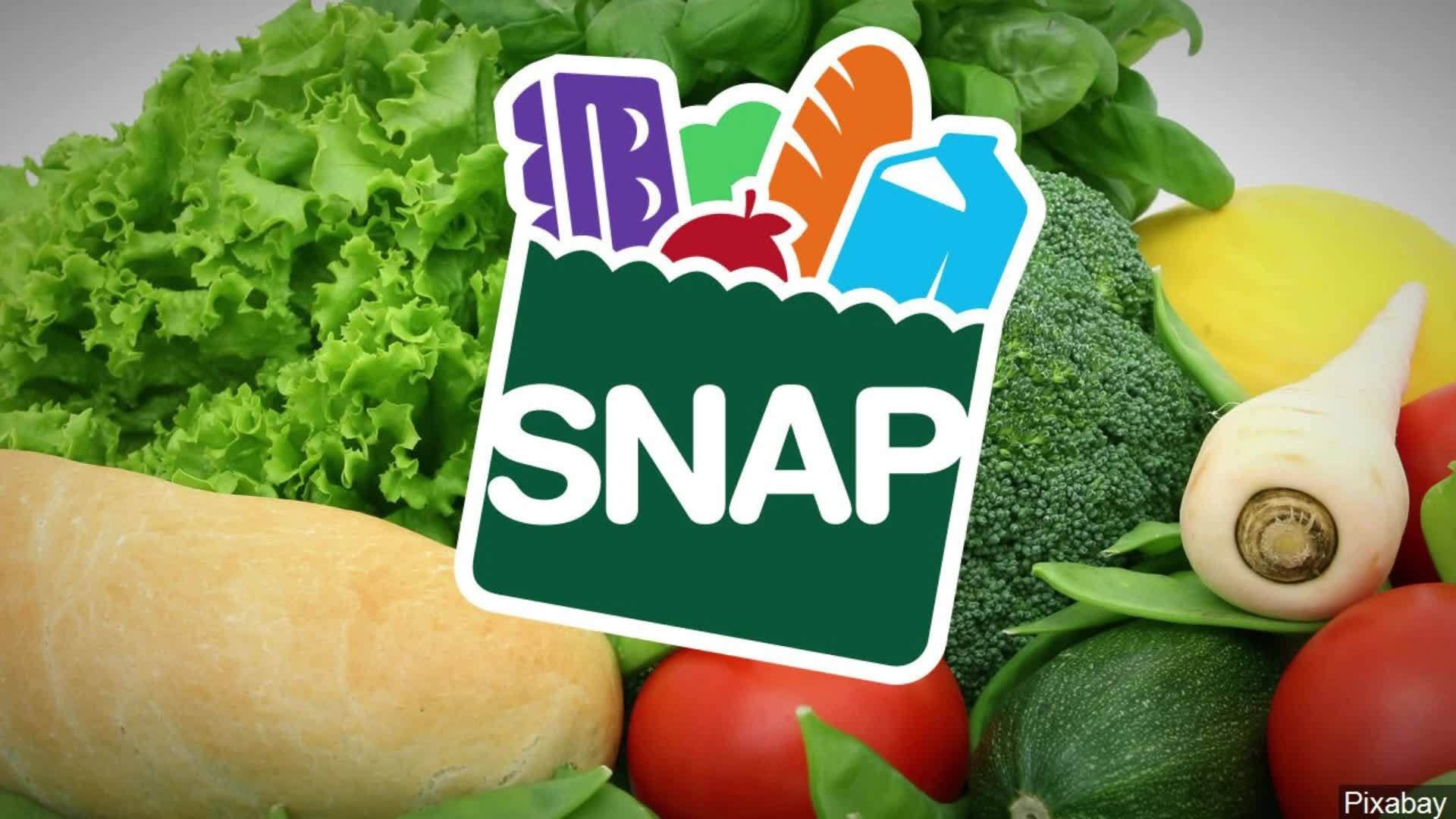 Dentist improperly receives SNAP benefits