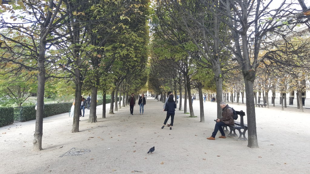 Park, Paris, Tuileries, Garden, pathway, Palais Royal