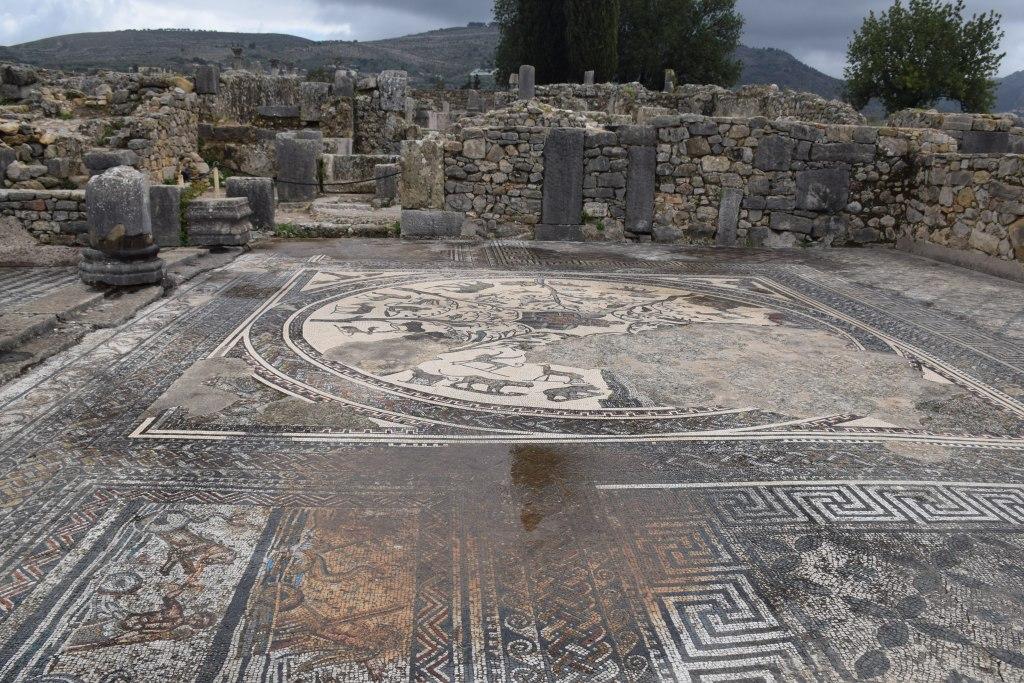 Volubilis, mosaic, villa, excavations, Roman cities, Morocco, ancient civilizations