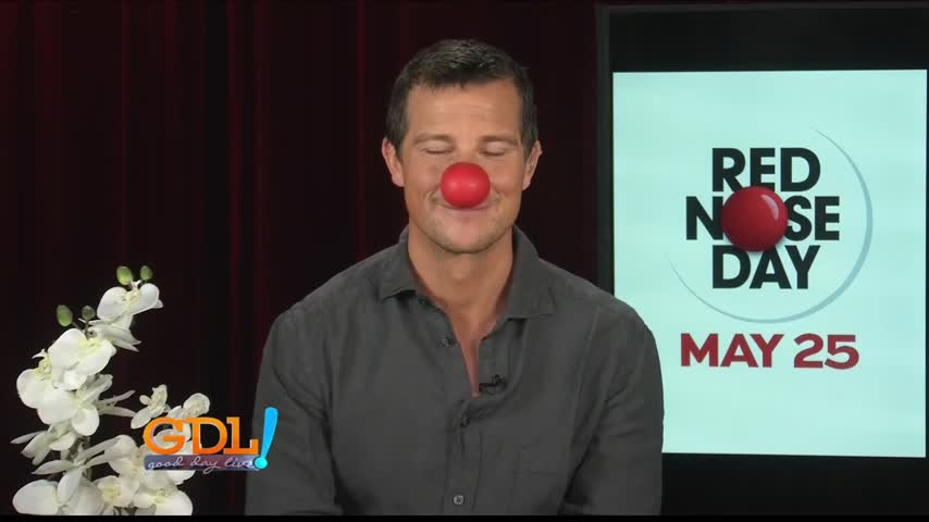 2017 red nose day