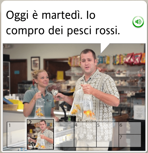 The funniest Rosetta Stone stock images: Italian, on Tuesday we buy fish