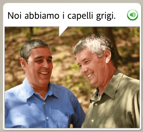 The funniest Rosetta Stone stock images: Italian, we have gray hair