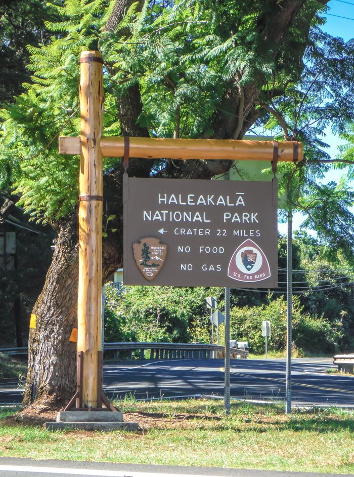 Haleakala National Park | Haleakala Crater | Maui, Hawaii | Sunrise experience and mountain biking | Nene state goose | Wildlife, lavender, eucalyptus, scenery