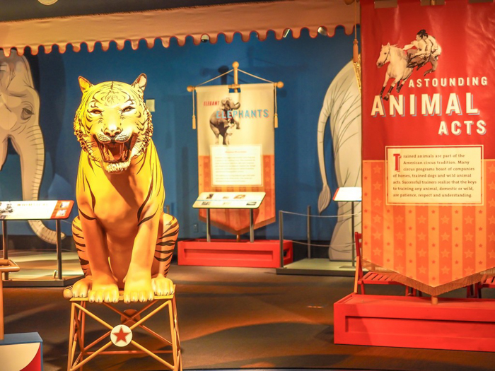How creepy is the Ringling Brothers Circus Museum   Sarasota, Florida   Barnum and Bailey Circus   Greatest Show on Earth   The Greatest Showman   Circus history   Clowns   animals, tigers