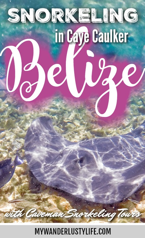 Snorkeling in Caye Caulker, Belize with Caveman Snorkeling Tours | Hol Chan Marine Reserve Barrier Reef | Scuba Diving and Snorkeling | Caribbean, Central America | Sting rays, sea turtles, manatees, shipwrecks, nurse sharks | Shark Ray Alley