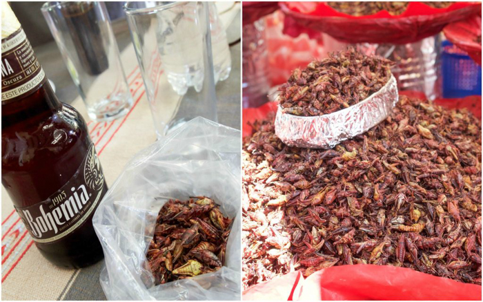 17 Things That Shocked Me in Mexico | Mexico City, Oaxaca de Juarez | eating grasshoppers in Oaxaca City | Chapulines