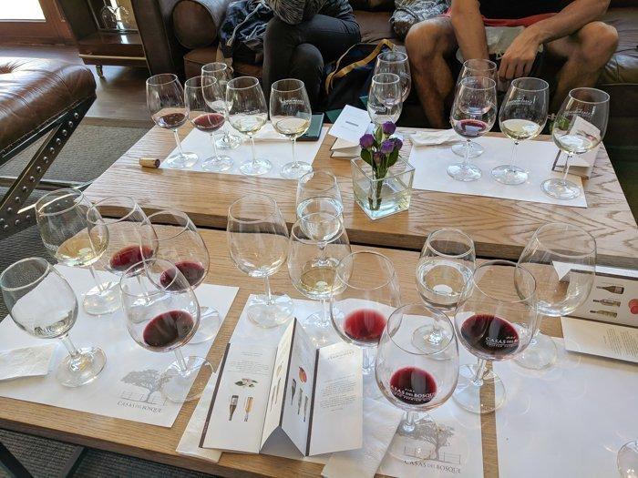 Our glasses at Casas del Bosque winery | Wine Tasting in Chile: Casablanca vs. Maipo Valley | How to decide where to go wine tasting in Chile | Casablanca valley wineries | #chile #wine #winetasting #vineyard #casasdelbosque #casablanca