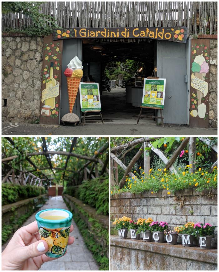 5 days in sorrento, italy | I giardini da cataldof, limoncello #sorrento #italy #limoncello