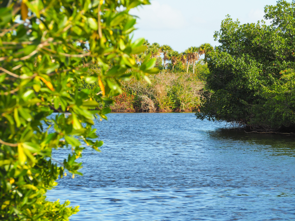 2 days in Fort Myers, Florida, a fun weekend itinerary: canals at the manatee park