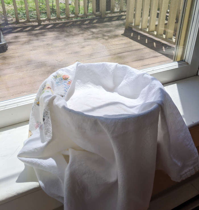 towel covered bowl in the window