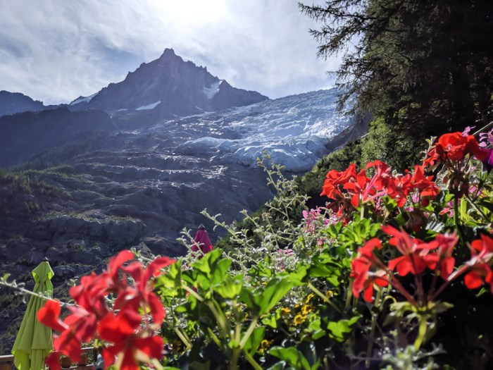 Awesome things to do in Chamonix in the summer: Alpine bucket list / glacier and flowers