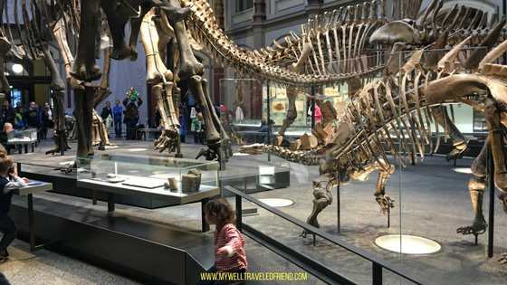 www.mywelltraveledfriend.com Top 5 child-friendly museums Berlin