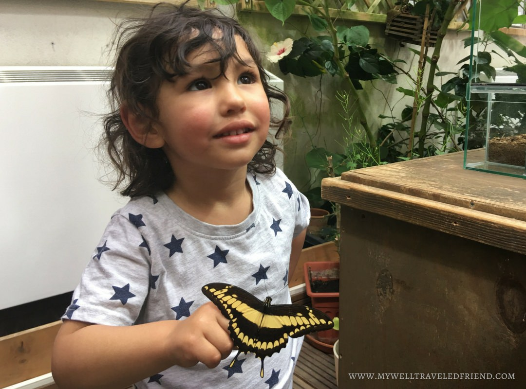 5 Day Trips from Berlin with Kids 4