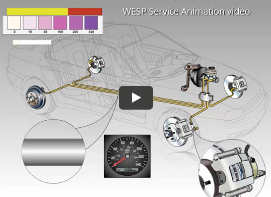WESP Service Animation video