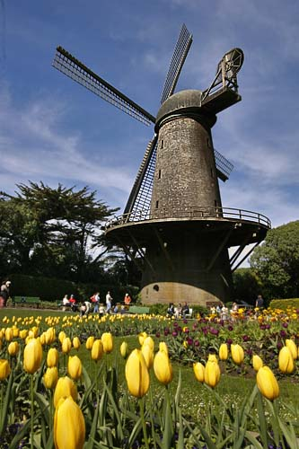 dutch-wind-mills-3
