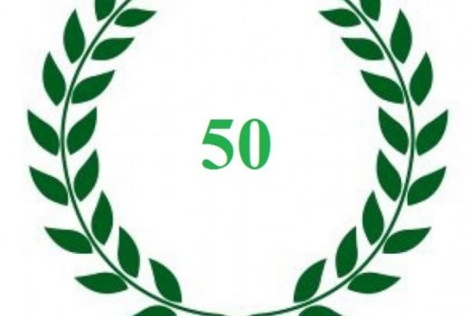 classifica-50-fashion-blogger-mese-dicembre-2013-600x400