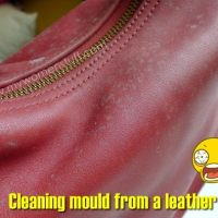 Mould on your leather bag? Some tips on how to clean a mouldy leather bag