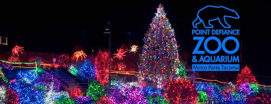 Zoo Lights Columbus Price