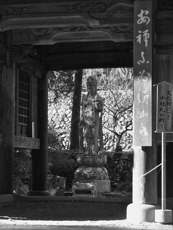 RyuOnjiSaitama11