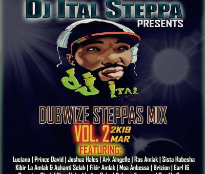 DJ Ital Steppa Dubwize Steppas Mix Vol II