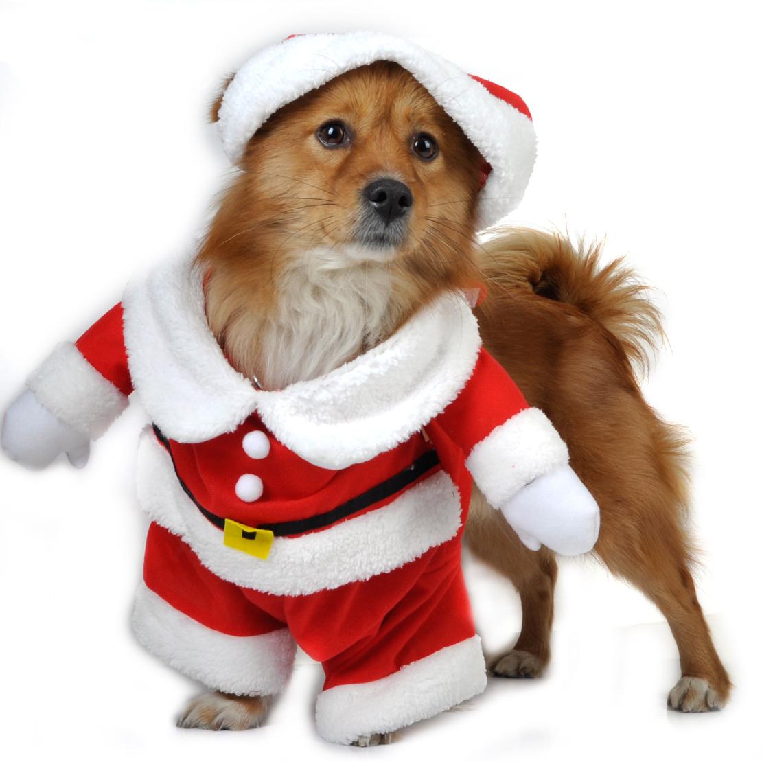 Pet Puppy Dog Christmas Clothes Santa Claus Costume