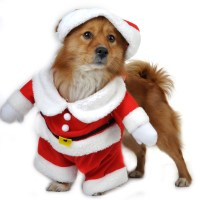 Pet Puppy Dog Christmas Clothes Santa Claus Costume
