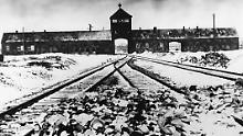 Vor 64 Jahren wurde das Konzentrations- und Vernichtungslager Auschwitz befreit.