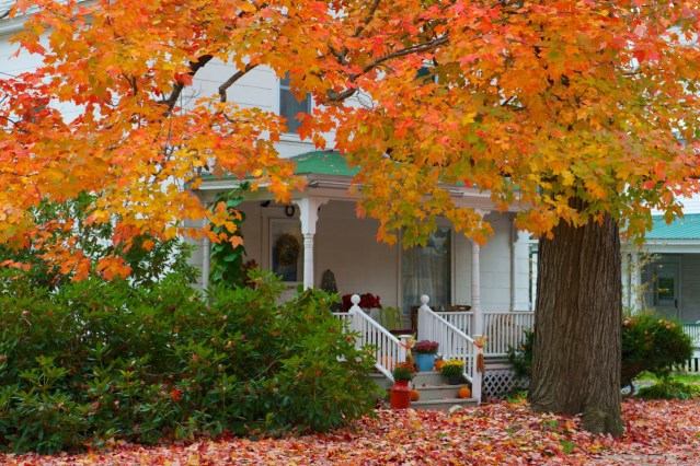 Glorious Autumn: What to See in Vermont Today