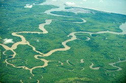 Regenwald in Costa Rica (Foto: Robert Tema | iStockphoto | Thinkstock)