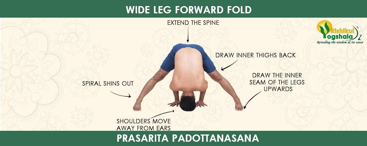 Wide-Angle Standing Forward Bend Pose (Prasarita Padottanasana)