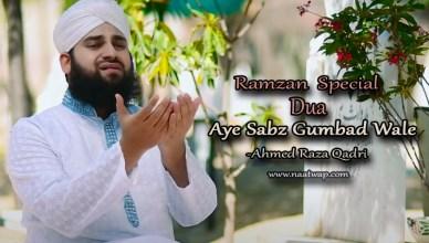 Aye Sabz Gumbad Wale By Ahmed Raza Qadri
