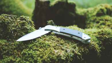صورة الشرطة: طعن أم وابنتها بسكين في Ballerup غرب العاصمة