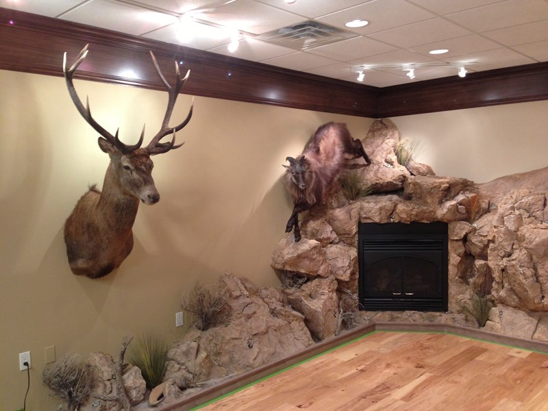 Custom Designed Trophy Rooms  Rock Wall Construction