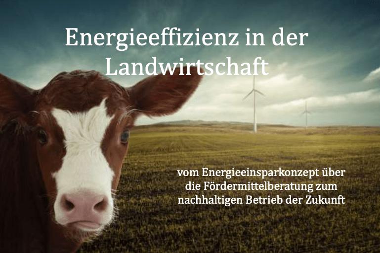 Das Titelbild des Ratgebers für mehr Energieeffizienz in der Landwirtschaft von Michael Wühle