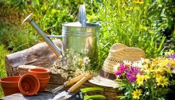 Naturgarten anlegen Gartengestaltung ist ganz einfach